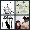 4 Pics 1 Word Answer Birdcage