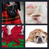 4 Pics 1 Word Answer Britain