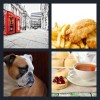 4 Pics 1 Word Answer English