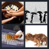 4 Pics 1 Word Answer Soaking
