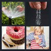 4 Pics 1 Word Answer Sprinkle