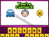 Guess The Emoji Car Old Lady Flower
