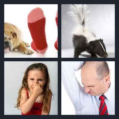 4-pics-1-word-stink