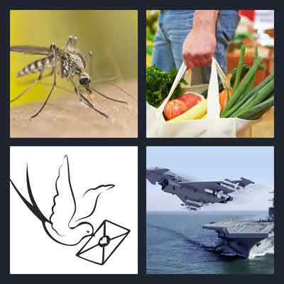 Pics 1 Word Answer Carrier | What's The Word 4 Pics 1 Word Answer