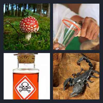 Pics 1 Word Answer Poison | What's The Word 4 Pics 1 Word Answer