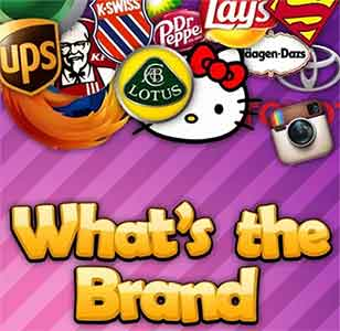 guess the brand based on the company / product summary of the brand