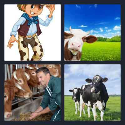 4-pics-1-word-cow