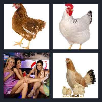 4-pics-1-word-hen