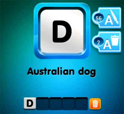 one-clue-australian-dog