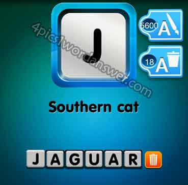 one-clue-southern-cat
