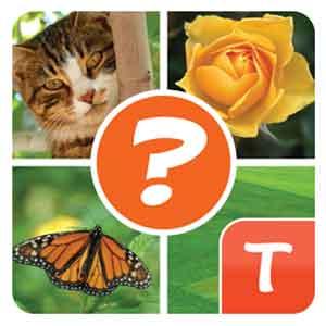4-pics-plus-answers
