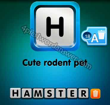 one-clue-cute-rodent-pet
