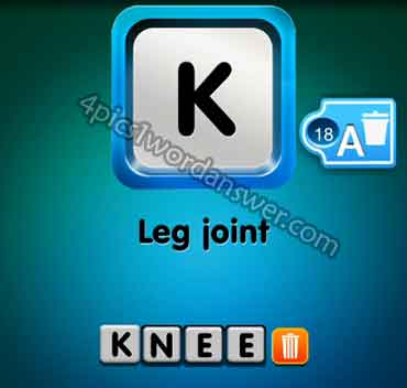 one-clue-leg-joint