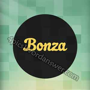 bonza-answers