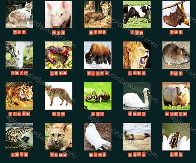 guess-animal-2015-cheats