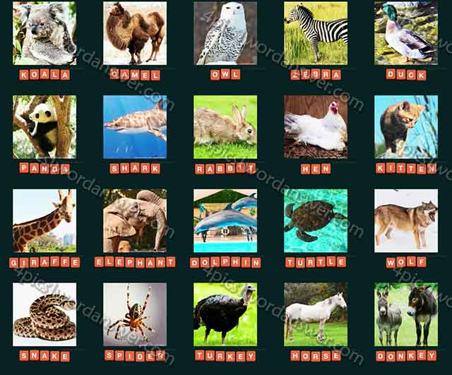 guess-animal-2015-level-21-40-answers