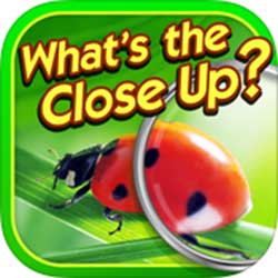 whats-the-close-up-answers
