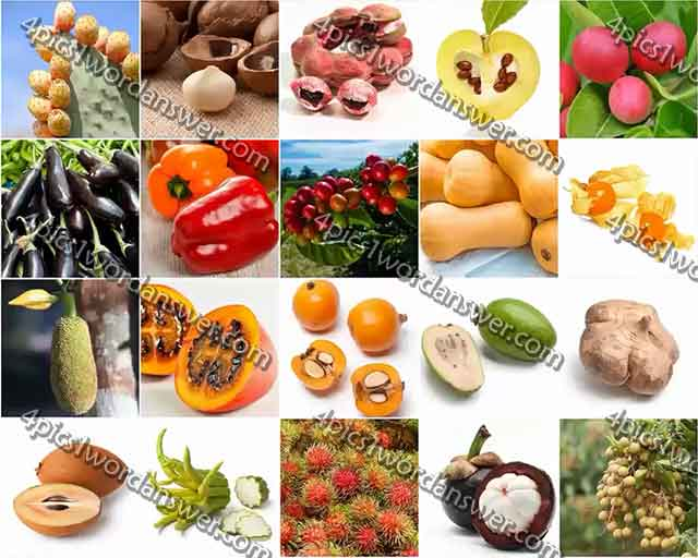 100-pics-fruit-and-nut-level-81-100-answers