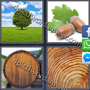 4 Pics 1 Word Daily Puzzle July 4 2017 Answer | 4 Pics 1 Word Daily
