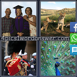 4-pics-1-word-daily-puzzle-november-11-2017