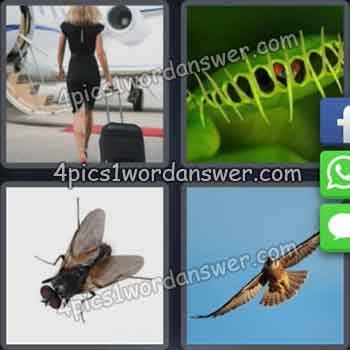 4-pics-1-word-daily-puzzle-july-28-2019
