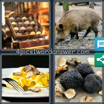 4-pics-1-word-daily-puzzle-january-28-2020