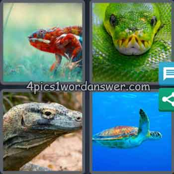 4-pics-1-word-daily-bonus-puzzle-february-18-2020