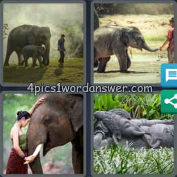 4-pics-1-word-daily-puzzle-february-24-2020