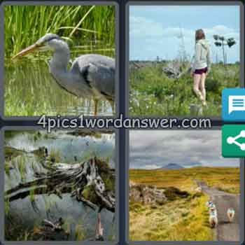 4-pics-1-word-daily-bonus-puzzle-march-26-2020