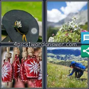 4-pics-1-word-daily-bonus-puzzle-june-30-2020