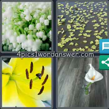 4-pics-1-word-daily-puzzle-june-12-2020