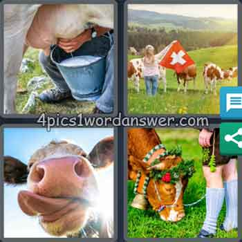 4-pics-1-word-daily-puzzle-june-6-2020