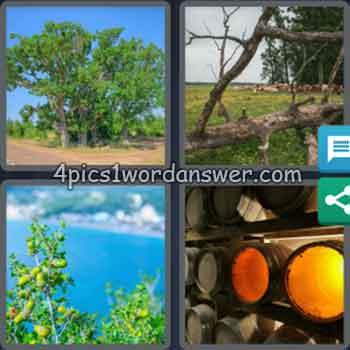 4-pics-1-word-daily-bonus-puzzle-july-3-2020