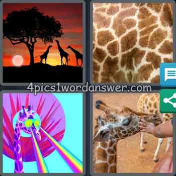 4-pics-1-word-daily-bonus-puzzle-september-21-2020
