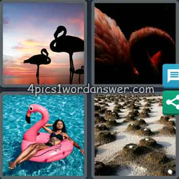 4-pics-1-word-daily-puzzle-september-3-2020