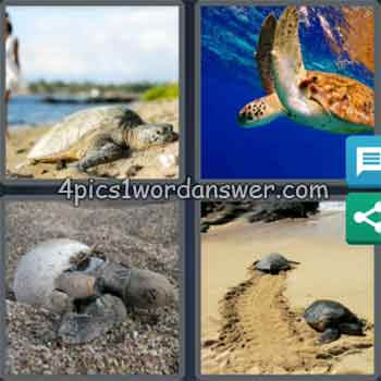 4-pics-1-word-daily-puzzle-september-5-2020
