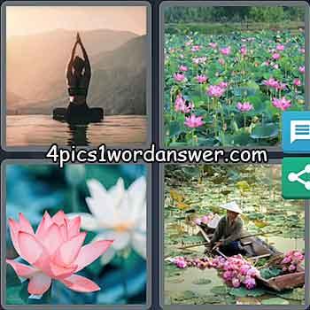 4-pics-1-word-daily-bonus-puzzle-november-21-2020