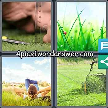 4-pics-1-word-daily-bonus-puzzle-march-2-2021