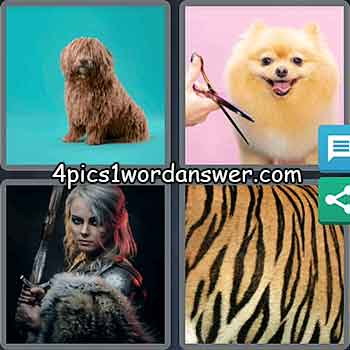 4-pics-1-word-daily-bonus-puzzle-march-23-2021