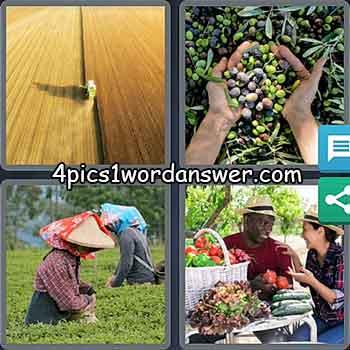 4-pics-1-word-daily-bonus-puzzle-march-24-2021