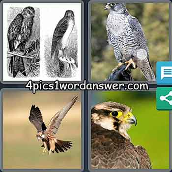 4-pics-1-word-daily-bonus-puzzle-march-7-2021
