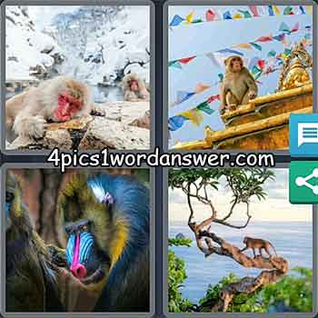4-pics-1-word-daily-puzzle-march-23-2021