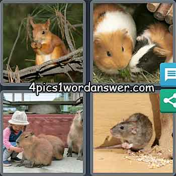4-pics-1-word-daily-puzzle-march-26-2021
