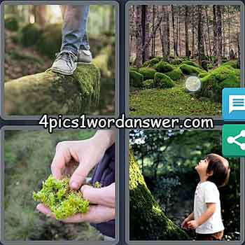 4-pics-1-word-daily-puzzle-march-28-2021