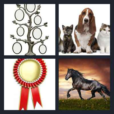 4 Pics 1 Word Answer Pedigree