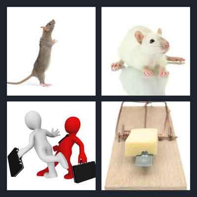 4-pics-1-word-rat
