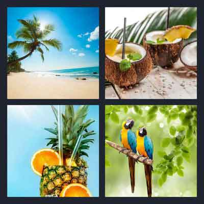 4-pics-1-word-tropical