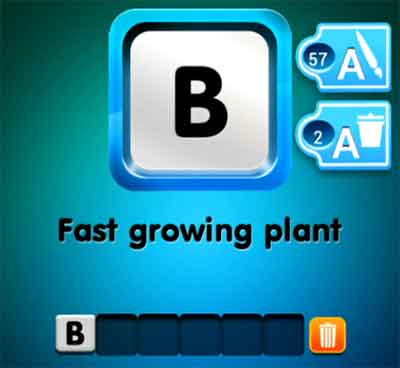 one-clue-fast-growing-plant