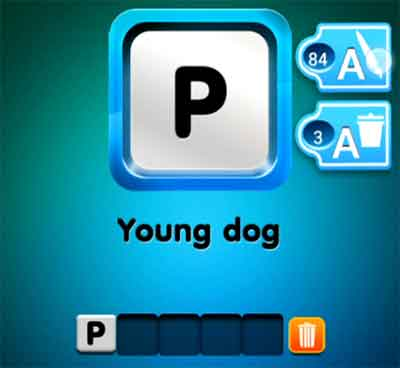 one-clue-young-dog