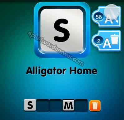 one-clue-alligator-home